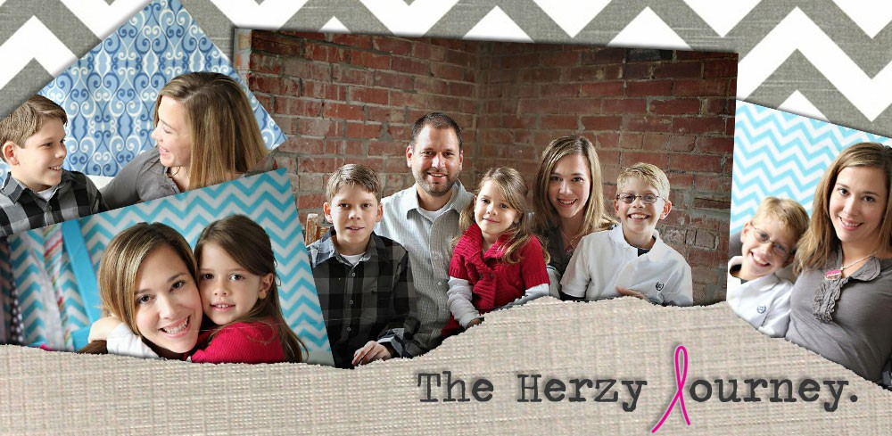 The Herzy Journey